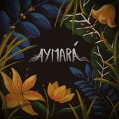Aymará de Aymará