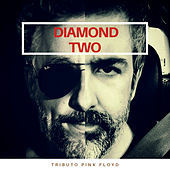Tribute Pink Floyd by Diamond Two