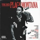 Plaga Montana von Yung Dred