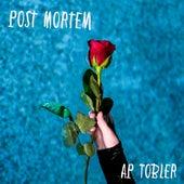 Post Mortem by AP Tobler