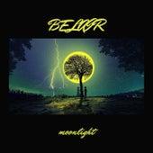 Moonlight di Bel Air
