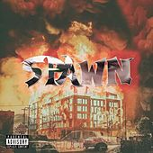 Spawn by THC