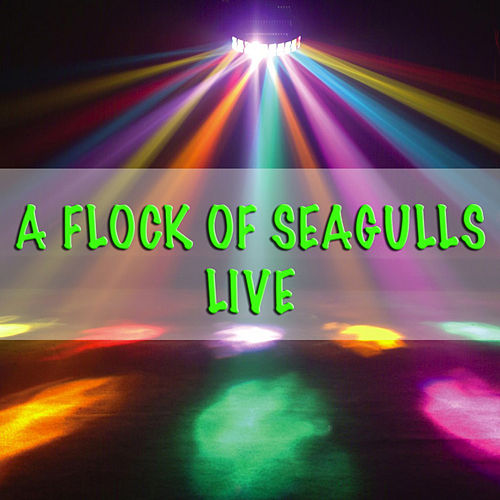 A Flock Of Seagulls - Live by A Flock of Seagulls