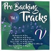 Pro Backing Tracks V, Vol.1 by Pop Music Workshop
