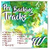 Pro Backing Tracks W, Vol.2 by Pop Music Workshop