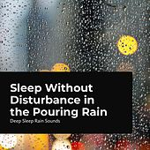 Sleep Without Disturbance in the Pouring Rain de Rain Sounds Collection