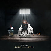Bars From The Pen 2 by Remtrex