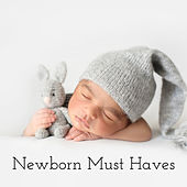 Newborn Must Haves: 15 Lullabies to Sleep for Your Baby by Baby Songs Academy