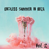 Endless Summer in Ibiza Vol. 2 - The Hottest Dance Chillout Songs von Ibiza Chill Out