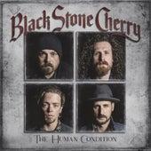 Ringin In My Head by Black Stone Cherry
