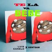 Te La Va Bebe von Luis Canelo