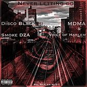 Never Letting Go by All Harlem Music