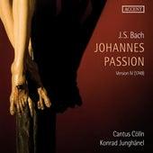 Bach: St. John Passion de Wolf Matthias Friedrich