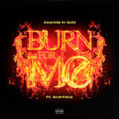 Burn For Me (feat. Scarface) de Asshole In Gold
