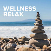 Wellness Relax von Various Artists