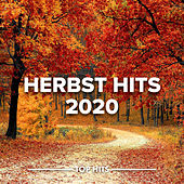 Herbst Hits 2020 de Various Artists