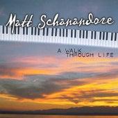 A Walk Through Life by Matt Schanandore