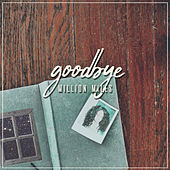 Goodbye de Million Miles