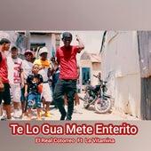 Te Lo Gua Mete Enterito by EL Real Cotorreo
