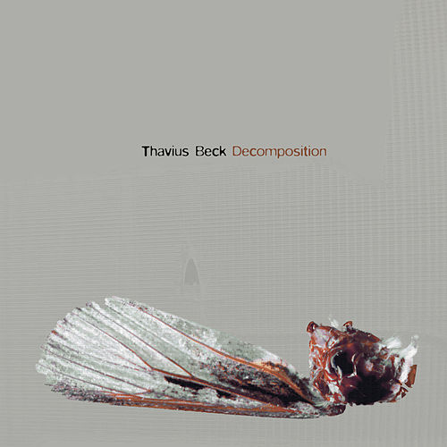 Decomposition by Thavius Beck