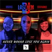 Never Wanna Lose You Again de DJ Laschem