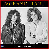 Shake My Tree by Jimmy Page