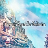 77 Beautiful Sounds for Meditation by Classical Study Music (1)