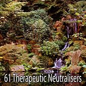 61 Therapeutic Neutralisers de Meditación Música Ambiente