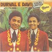 Os 2 Goianos von Durval e Davi