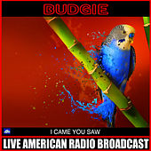 I Came You Saw (Live) by Budgie