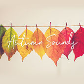 Autumn Sounds de Various Artists