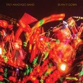 Burn It Down (Live) by Trey Anastasio