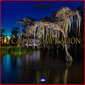 Depths of the Cajun Swamps Vol. 3 by Various Artists