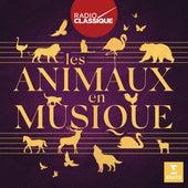Les animaux en musique (Radio Classique) de Various Artists