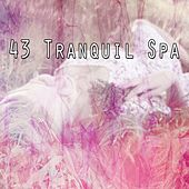 43 Tranquil Spa by Best Relaxing SPA Music