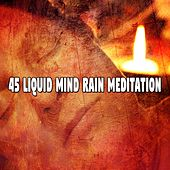 45 Liquid Mind Rain Meditation de Ocean Sounds Collection (1)