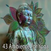 43 Ambience for Yoga de Meditation Spa