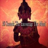 50 Sounds the Encourage the Mind de Musica Relajante