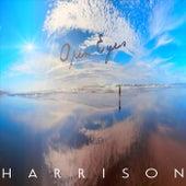 Open Eyes de Harrison