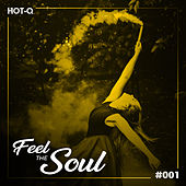 Feel The Soul 001 by Various Artists