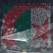 Le meilleur du raï by Various Artists