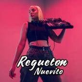 Regueton Nuevito de Various Artists