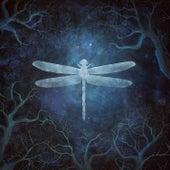 Odonata - 20th Anniversary Edition by Amethystium