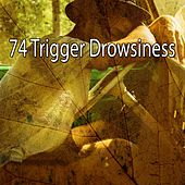 74 Trigger Drowsiness by Relaxing Music Therapy
