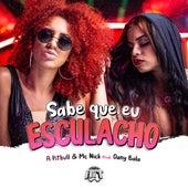 Sabe Que Eu Esculacho by A Pitbull, Mc Nick, Dany Bala