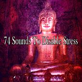 74 Sounds to Disable Stress di Lullabies for Deep Meditation