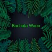 Bachata Waoo de Frank Reyes, Fran Reyes, Joe Veras, Juan Bautista, Leonardo Paniagua, LUIS MIGUEL DEL AMARGUE, Luis Segura, Luis Vargas