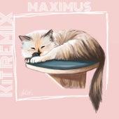 КiТ (Remix) von Maximus Wel