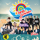 Boys Of Summer de Various Artists