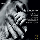 Haydn: Die Schöpfung von Il Giardino Armonico